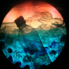 "still from show ""plasticity now"", mixed media on overhead projector, 2008. www.mindofasnail.org"