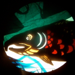 "salmon puppet portrait, mixed media on overhead projector from show ""ursa's imaginings"" 2010. www.mindofasnail.org"