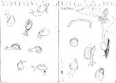 shelters sketch
