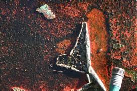 peeling wall. digital photo 2010