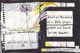 """plants as teachers"" collage, pen, pencil on paper. detail from ""open confusion"" zine, 2008. Jessica Gabriel."