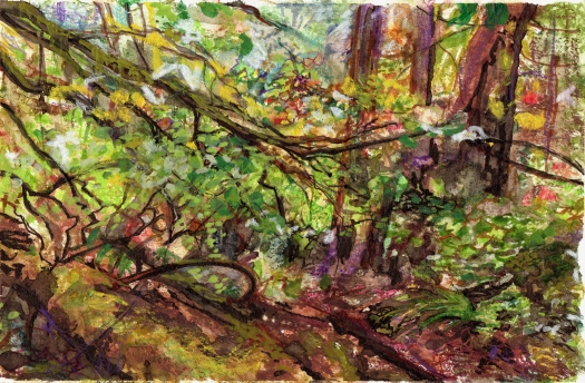 forest sketch rainy.jpg